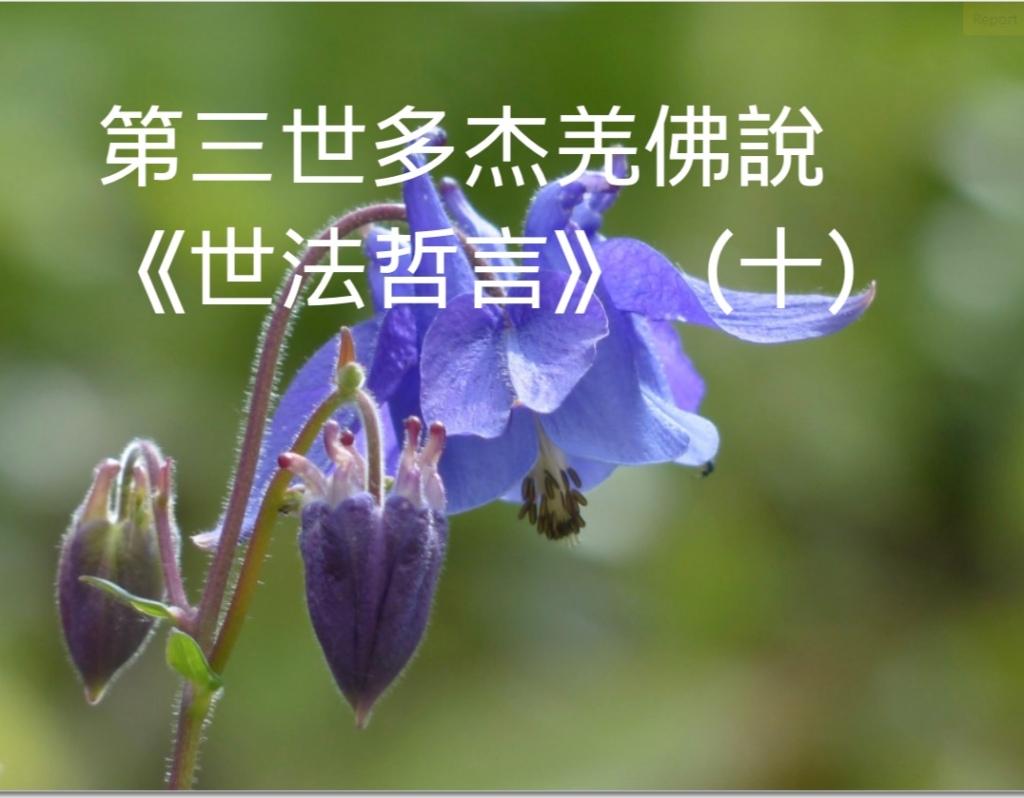 第三世多杰羌佛說《世法哲言》(十)