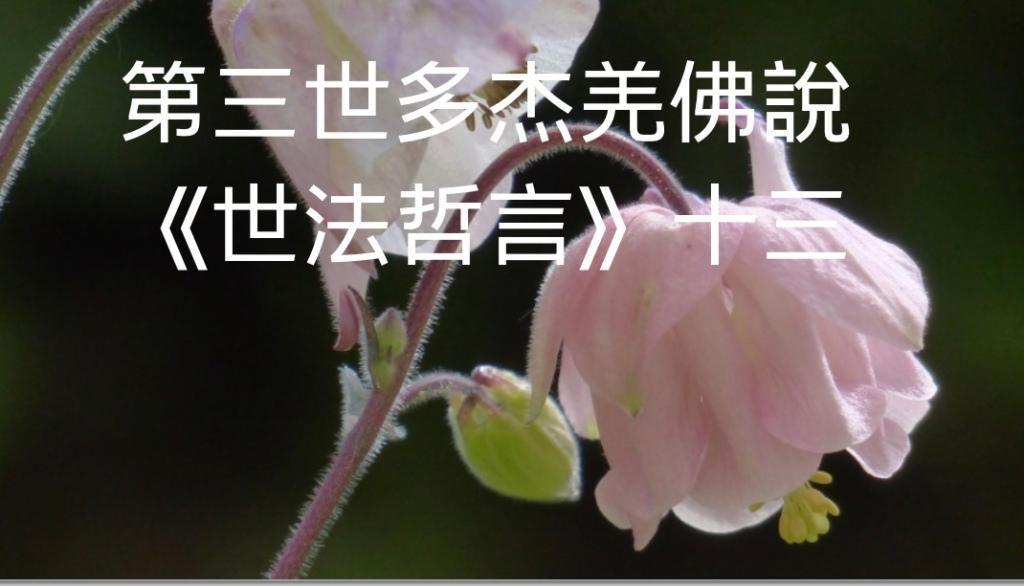 第三世多杰羌佛說《世法哲言》(十三)