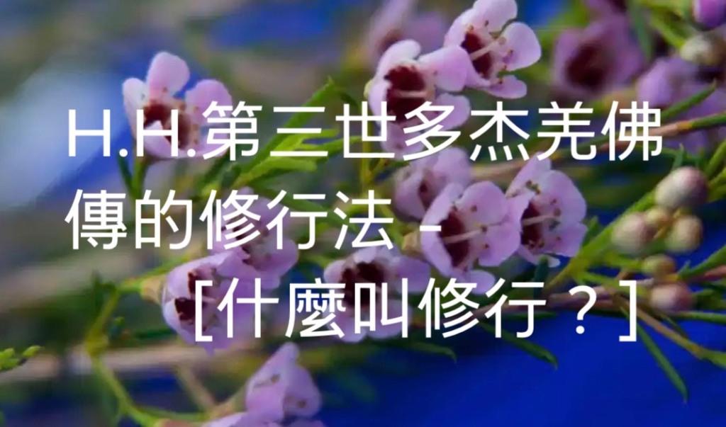 H.H.第三世多杰羌佛傳的修行法-什麼叫修行?