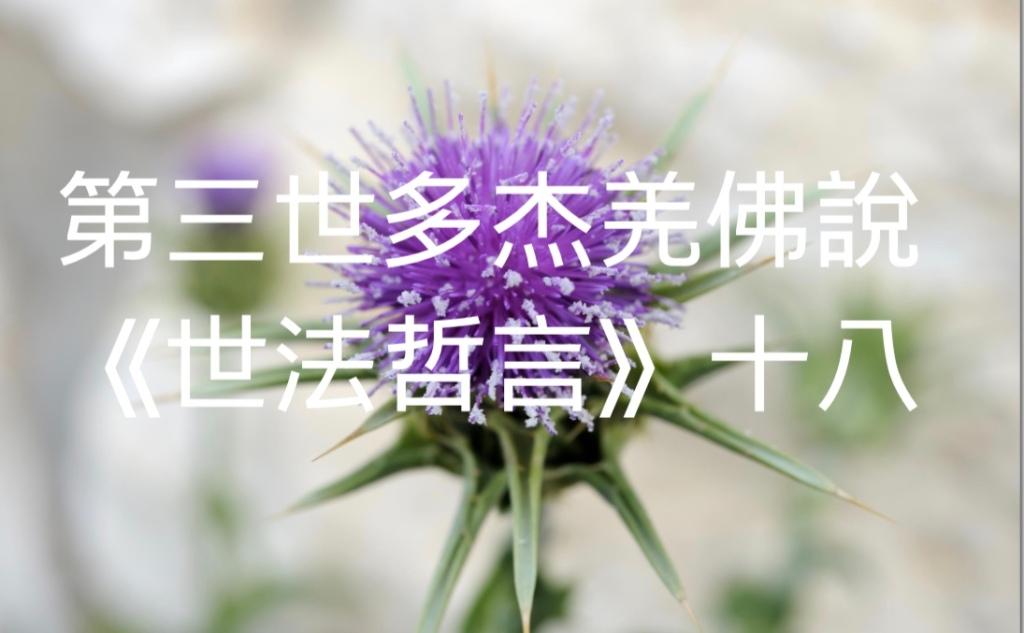 第三世多杰羌佛說《世法哲言》(十八)